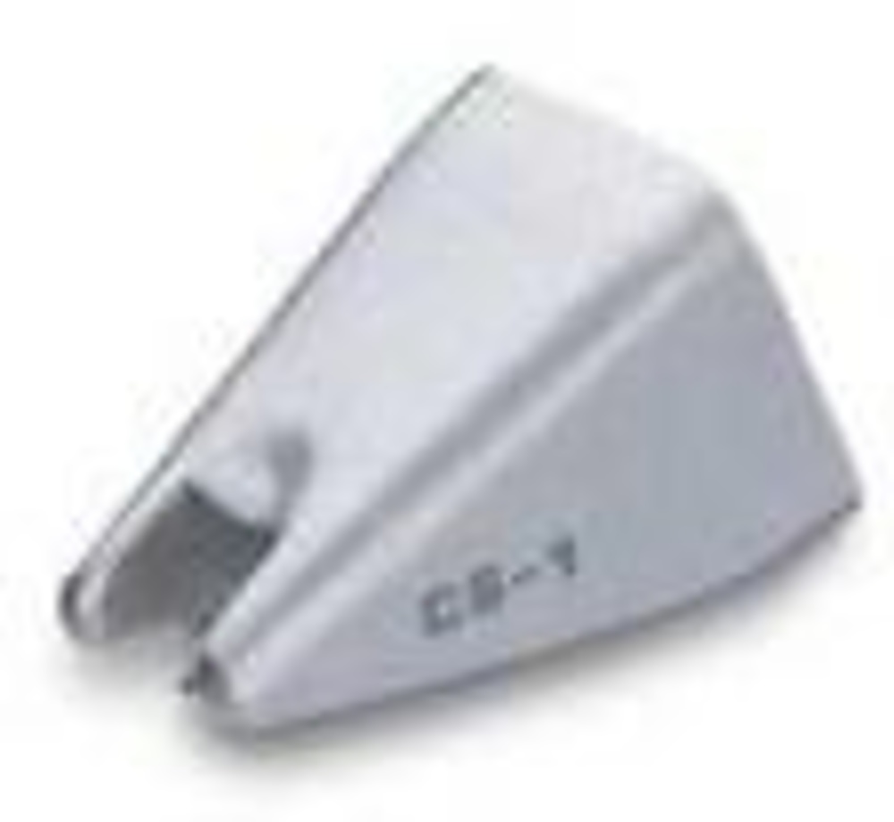 CS1RS