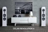 HECO Celan Revolution 9 ( pareja)
